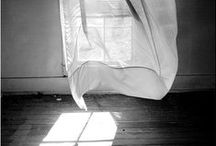 | window |
