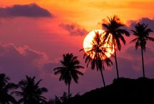 TROPICAL SUNSETS / The most romantic thing on earth is a Tropical Sunset!