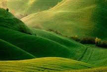 | Green views | / by Chifumi Hagihara