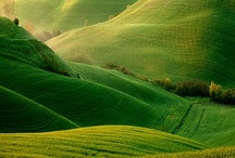 | Green views |
