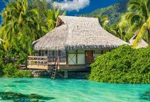 MY ISLAND HOME / I have always dreamed about living in a thatched hut on a tropical island! It would have to be at the top of a white sand beach in front of a turquoise lagoon with all things bamboo and driftwood! I have come close at my own Coconut Cottage!