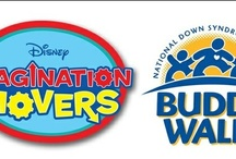 National Buddy Walk® Partners / NDSS thanks our National Buddy Walk® Partners for their incredible support of the Down syndrome community and over 250 Walks that take place annually around the country and overseas. Learn more about the National Buddy Walk® Program at http://buddywalk.org!