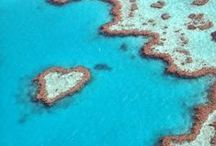 GREAT BARRIER REEF / Australia's Great Barrier Reef is beautiful and spectacular. It stretches 2700 kilometers parallel to the Queensland coast and can be seen from outer space!