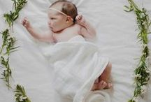 The Cutest Baby Portraits / by Shop GCH