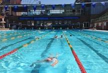 Sydney's Best Swimming Pools