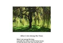 Poetry  / by Deborah Hardin