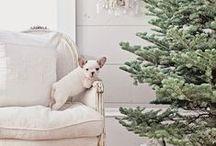 +I wish you a merry Christmas+ / Anything christmas