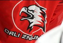 Orli Znojmo / My beloved ice hockey team!