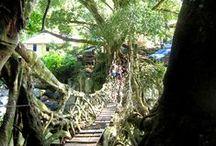 Indonesia / #Padang #Sumatera #Jawa #Bali #Banyuwangi #Bandung #Makassar #Lombok #Gili