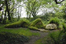 ART :: with Nature / human modifications to the natural world...