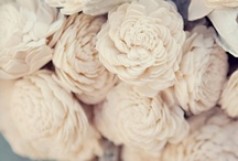 COLOR! :: Cream / ...Sand and Silk and Ivory