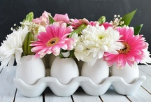 Easter Decor & Crafts / by lauravegas