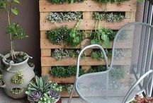 Outdoor Ideas / by lauravegas