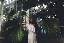 • GREENHOUSE •