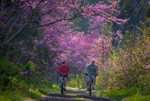 Hiking/Trail Running Bucket List