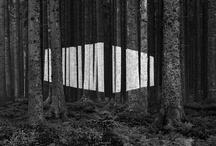 art / by Sophie Schurink