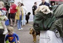 Baby & Dog Photos