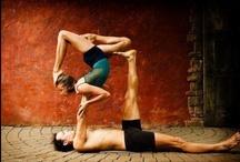 yoga / by Ashley Chamulak