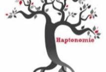 Haptonomie / Informatie over haptonomie en haptotherapie. Mooie teksten over gevoel, lichaam, vertrouwen en durven.