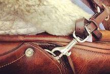 Equestrian&Co