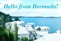 Bermudaful Summer / by vineyard vines