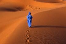 Footprints  / by Ann Thurmond