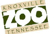I Love The Zoo ;)