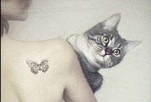 Domestic  & PREDATORS ;) / 'The smallest feline is a masterpiece.' Leonardo da Vinci / by czasoprzestrzennie