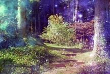 Paradise / by Chelsea Heitmann