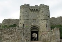 The house of Normandy / The House of Normandy, occasionally known as the House of Longsword, had Norwegian Viking roots and took the throne of England by conquest at the momentous Battle of Hastings in 1066, when they displaced the ancient line of native Saxon kings of the House of Wessex, which had ruled England since 827A.D