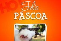 Feliz Páscoa! / by Hiper Original