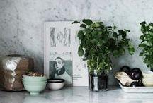 Kitchen / by Jamie Elkington