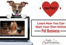 Pet Ecommerce / View Our Ready to Go Drop Ship Ecommerce Pet Businesses For Sale at Pure-Ecommerce.com.  Become apart of the BILLION $ Pet Industry with our collection of Pet Internet Businesses in a Box.   Facts & Figures about the Pet Industry •The APPA reports $55.53 billion sold in 2013 •62% of U.S. households own a pet, which equates to 72.9 million homes - Go to www.Pure-Ecommerce.com to see our Pet Businesses For Sale!