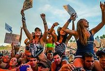 Faster Horses / July 18-20 / by MISpeedway
