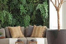 Paisagismo para interiores - verde que te quero! / Suculentas, plantas de interiores...