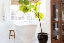 Bathroom / Bathroom design and decor inspirations
