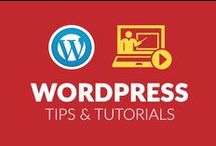 WordPress Tips & Tutorials / WordPress Tips & Tutorials