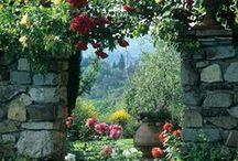 Garden Dreams / by Patricia Guerrero