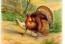 Thanksgiving / by Diane Cloud