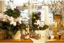 3,2,1..Natale! / Il conto alla rovescia è iniziato! Ogni giorno ormai si veste della magia delle feste. Il Natale è alle porte, ma siete sicuri di essere pronti a riceverlo? I decori non lasciano che l'imbarazzo della scelta, tra sfere, cuoricini, stelle, pini, orsacchiotti e renne fatati. Date un'occhiata su www.dalani.it!