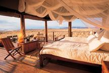 TREE HOUSES AND GLAMPING / Nature, sweet nature... but glamour!