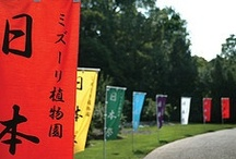 Annual Japanese Festival / by Missouri Botanical Garden