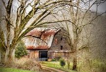 Old Barns / by Betty Wesley