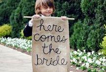Wedding / by Sarah Beth Weaver