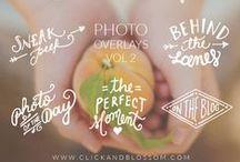 Photography Branding & Design