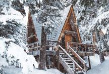 Little A-Frame in the Big Woods