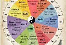 TCM / čínská medicína, čakry, mudry, mantry