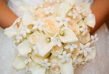 The Brides Bouquet / by Susan Robbins Mauriello