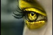 My Eyes See Yellow / All Things Yellow!! / by Susan Robbins Mauriello