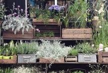 ♥ Gardening & Outdoor Living